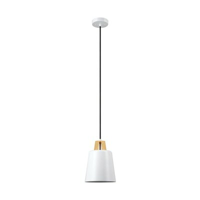 Jeor 1-Light Pendant