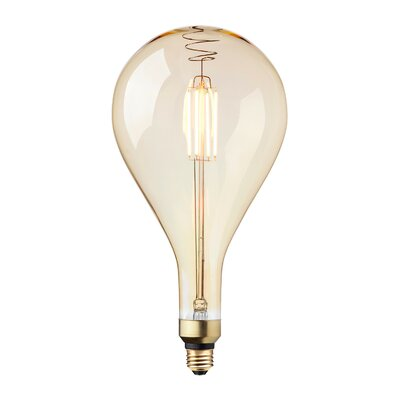 40W Incandescent Vintage Filament Light Bulb