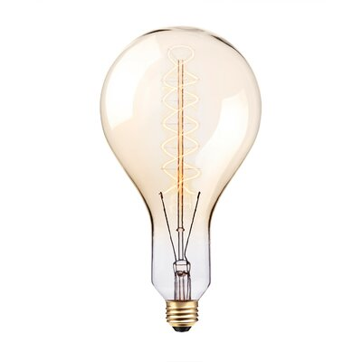 100W Incandescent Vintage Filament Light Bulb