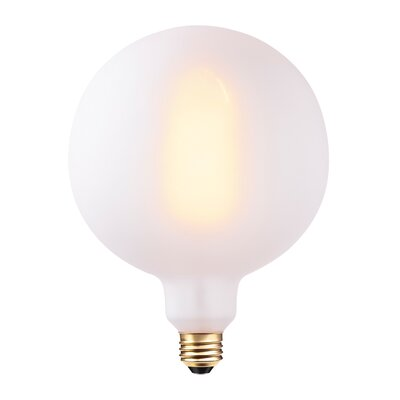 60W Frosted Incandescent Vintage Filament Light Bulb
