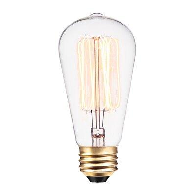 Vintage Edison 60 Watt (2700K) T10 Radio Tube Incandescent Filament Light Bulb