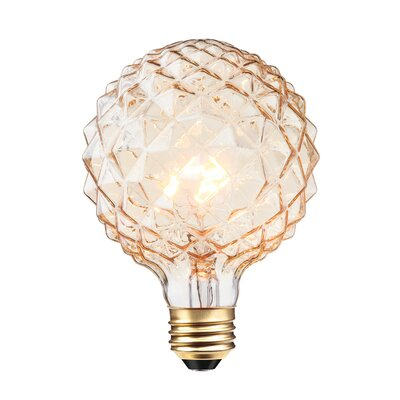 40W 26/Medium Incandescent Light Bulb