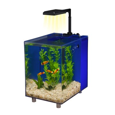 Prism 2 Gallon Desktop Aquarium Tank Color: Blue