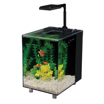 Prism 2 Gallon Desktop Aquarium Tank Color: Black