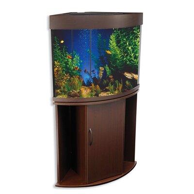 Buy low price penn plax compass rose ii corner aquarium for Buy fish tank