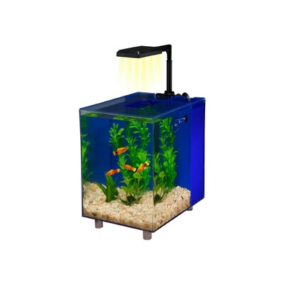 Prism 2 Gallon Desktop Aquarium Tank Color: Blue, Size: 10.5 H x 10 W x 8.15 D
