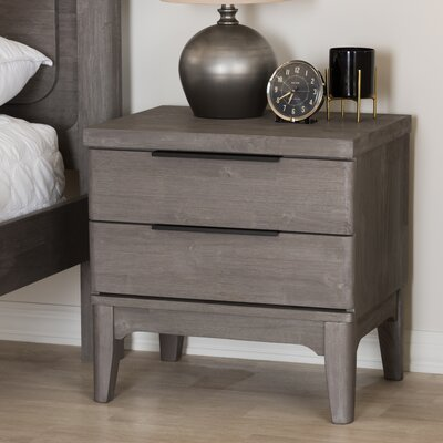 Duong 2 Drawer Nightstand