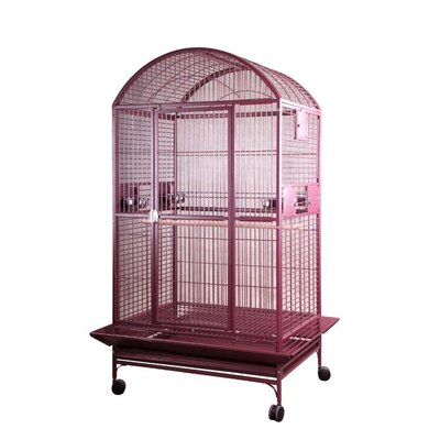 Giant Dome Top Bird Cage Color: Burgundy