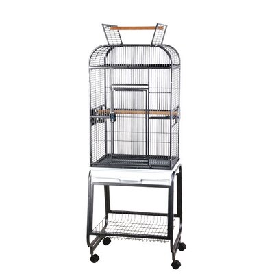 Opening Round Play Top Bird Cage with Stand Color: Black