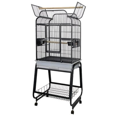 Victorian Open Play Top Bird Cage with Stand Color: Platinum