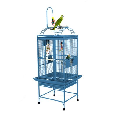 Medium Play Top Bird Cage Color: Blue