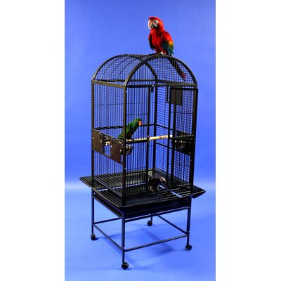 Medium Dome Top Bird Cage Color: Platinum