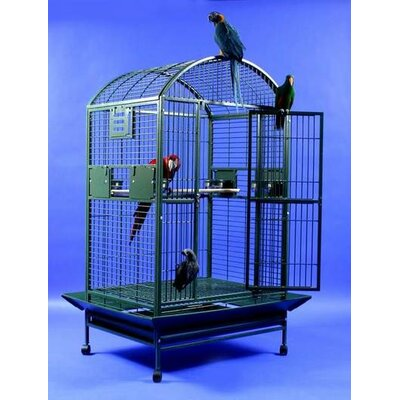 Extra Large Dome Top Bird Cage Color: Black