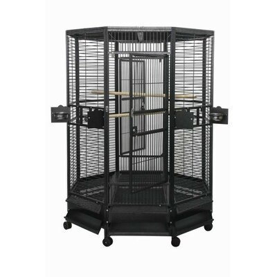 Large Octagon Bird Cage Color: Black