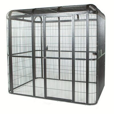 Bernadette Large Walk Bird Aviary Color: Black