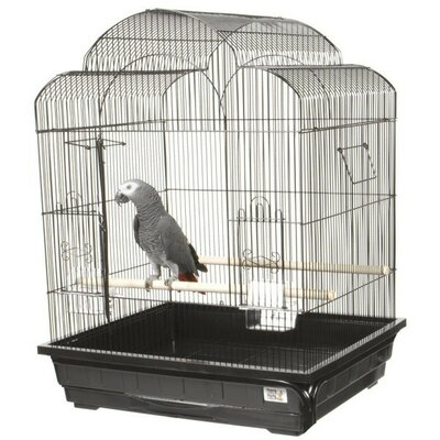 Victorian Small  Bird Cage Color: Black