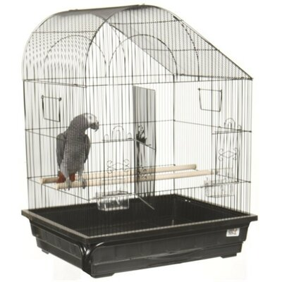 Slant Top Small  Bird Cage Color: Black