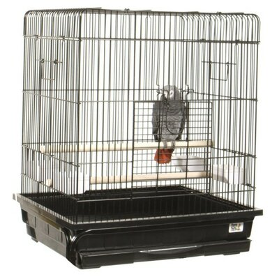 Flat Top Small  Bird Cage Color: Ivory