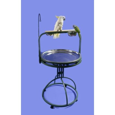 Deluxe Bird Play Stand with Wood Perch Color: Black