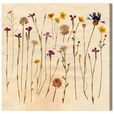 Vintage Flowers Canvas Print, Oliver Gal