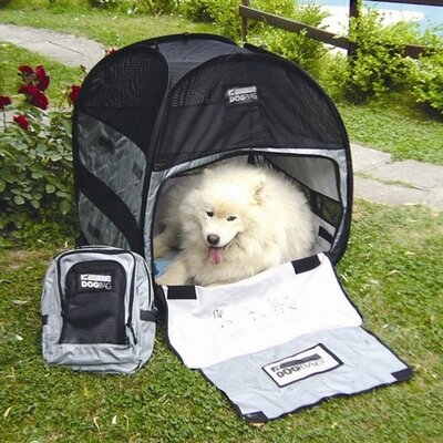 Bag Tent Pet Carrier Size: Large