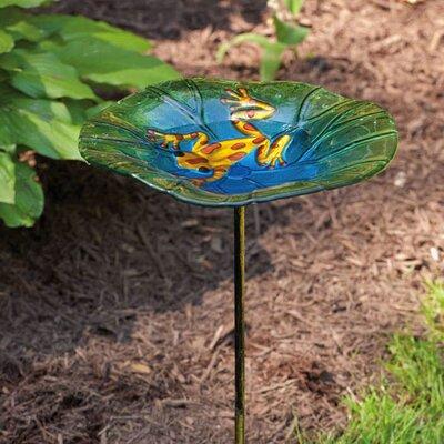 Frog Birdbath 3HN423