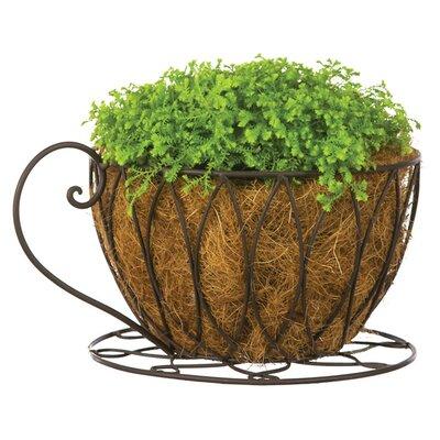 Judo Planter