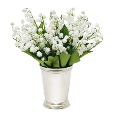 Lily of the Valley Plant in Julep Cup