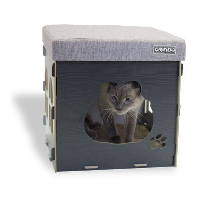 Cat Condo Color: Grey