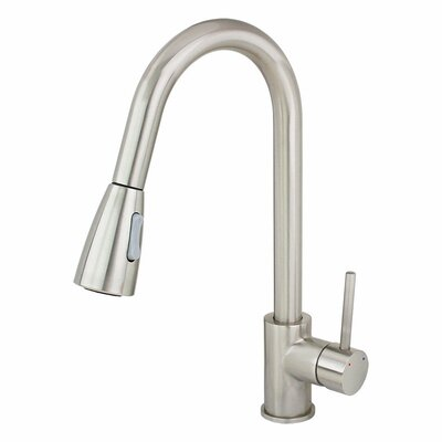 Single Handle Single Hole Kitchen Faucet with Pull out Dual Spray