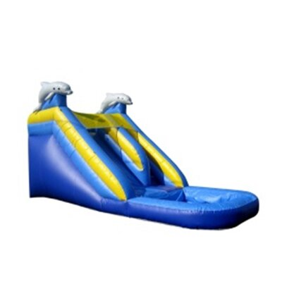 Dolphin Xtreme Wet/Dry Commercial Grade Inflatable Water Slide