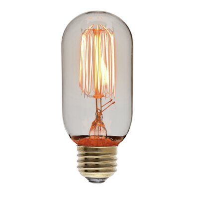 40W 110-130-Volt E27-Light Bulb