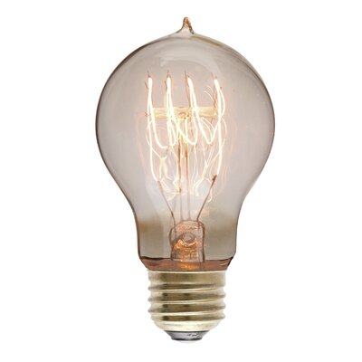 40W 110-130-Volt E26-Light Bulb