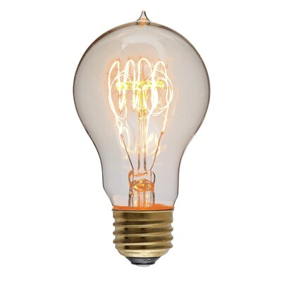 40W Gold 130-Volt Incandescent Light Bulb