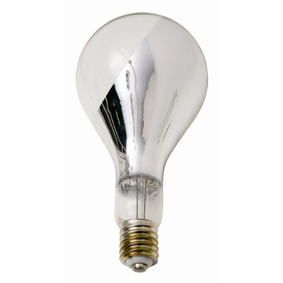 Buy Big Base Side Chrome Light Bulb Cheap Priced