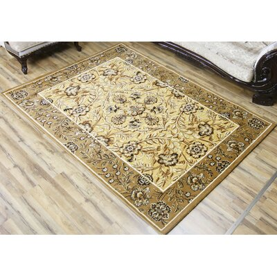 Shonil Beige/Ivory Area Rug Rug Size: Rectangle 53 x 73