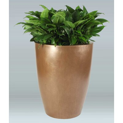 Raleigh Round Plastic Pot Planter Color: Earth Red IRAL-2442-PD-13