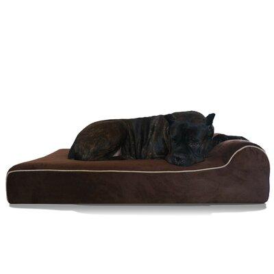 Bully Dog Bed Size: 52 L x 34 W