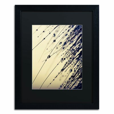 'Music of Yesterday' by Beata Czyzowska Young Framed Photographic Print Matte Color: Black, Size: 20
