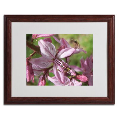 'Refined Grace' by Monica Fleet Framed Photographic Print Size: 16