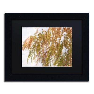 "Winter on Redwood"" by Kurt Shaffer Framed Photographic Print KS01055-B1114BMF"