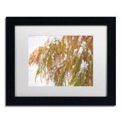 "Winter on Redwood"" by Kurt Shaffer Framed Photographic Print KS01055-B1114MF"