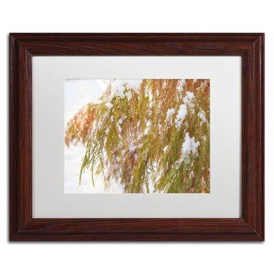 "Winter on Redwood"" by Kurt Shaffer Framed Photographic Print KS01055-W1114MF"