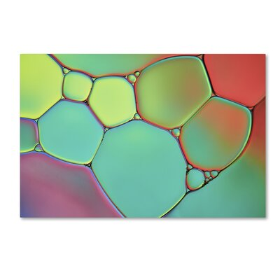 "Stained Glass III by Cora Niele Photographic Print on Wrapped Canvas Size: 22"" H x 32"" W x 2"" D ALI1732-C2232GG"