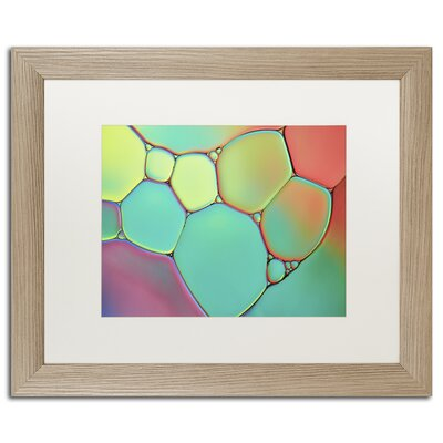 Stained Glass III by Cora Niele Framed Photographic Print ALI1732-B1620MF
