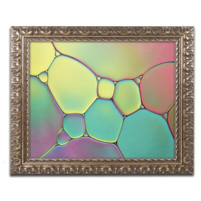 Stained Glass I by Cora Niele Framed Photographic Print ALI1730-G1114F