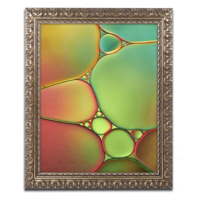 Stained Glass II by Cora Niele Framed Photographic Print ALI1731-G1114F