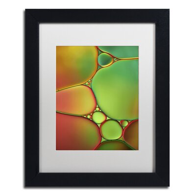 Stained Glass II by Cora Niele Framed Photographic Print ALI1731-B1114MF