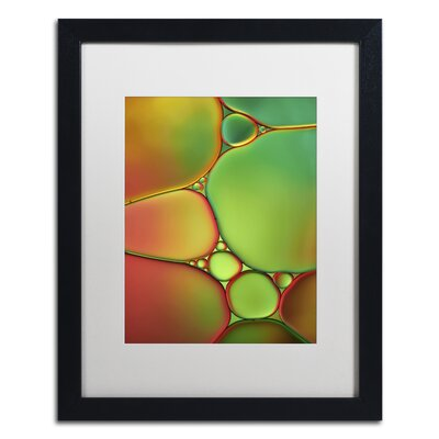 Stained Glass II by Cora Niele Framed Photographic Print ALI1731-B1620MF