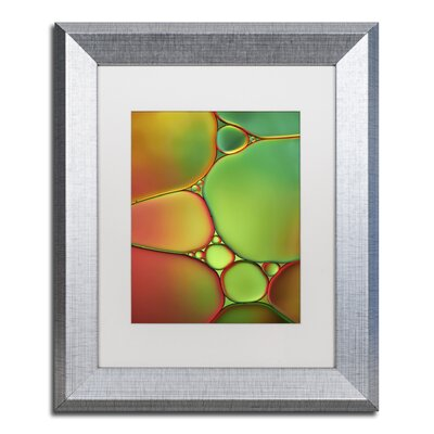 "Stained Glass II"" by Cora Niele Framed Photographic Print ALI1731-S1114MF"